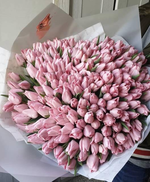 Букет «Тюльпаны», 201 шт, розовые