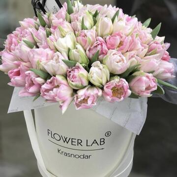 Букет «ТЮЛЬПАНЫ», розовые, 75 шт