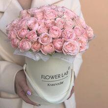 Коробка «Флора»